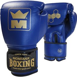 Gants de boxe Montana MMB 100 Bleu